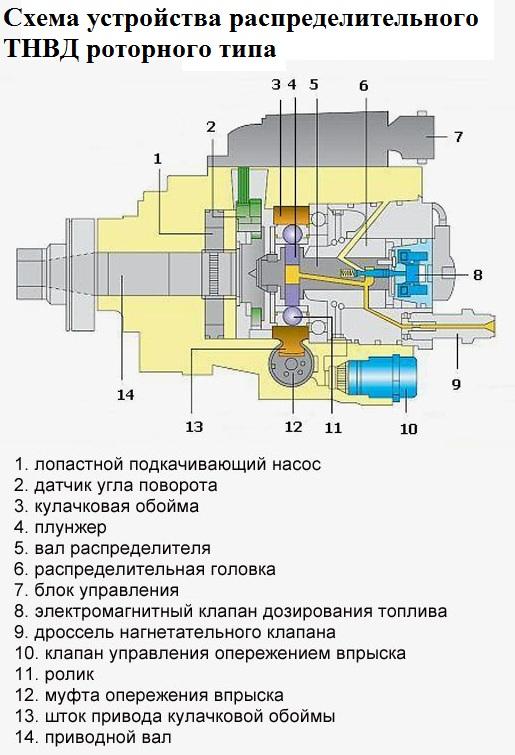 Схема секций тнвд распределительного типа